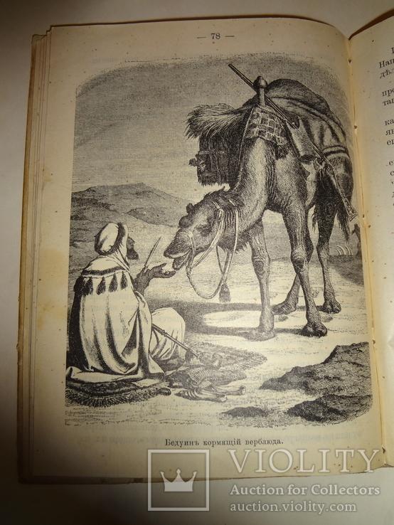 1902 Арабы Бедуины Великая Пустыня с картами и иллюстрациями