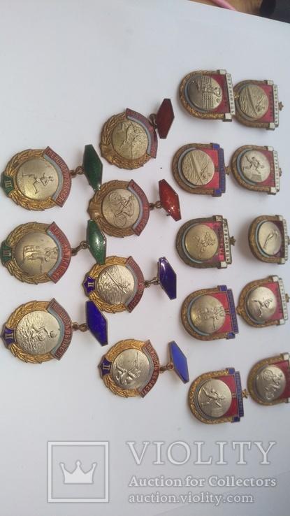 Чемпионы области