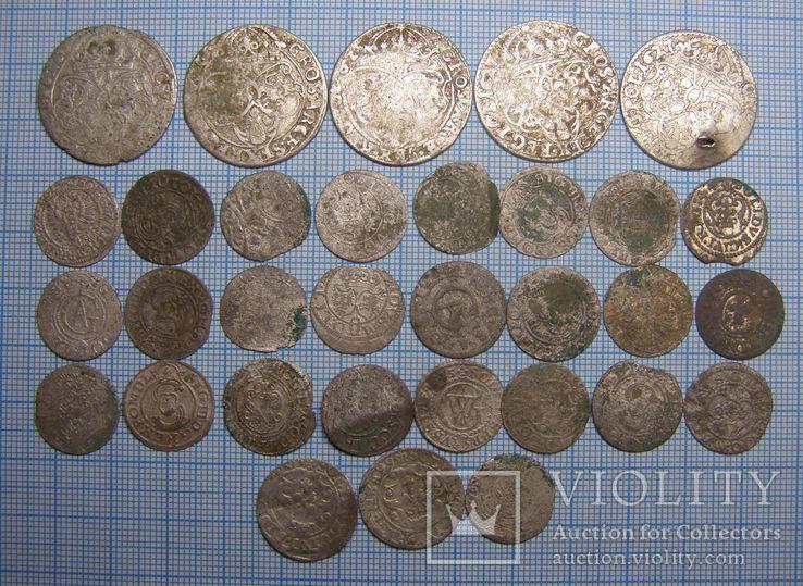 Скарб монет Польщі 1500-х рр.