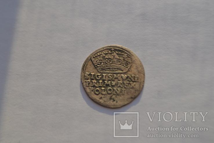 Коронный грош Сигизмунда