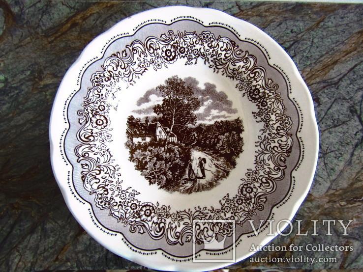 Tarelka Farfor Ironstone Tableware Underglaze Angliya Violity