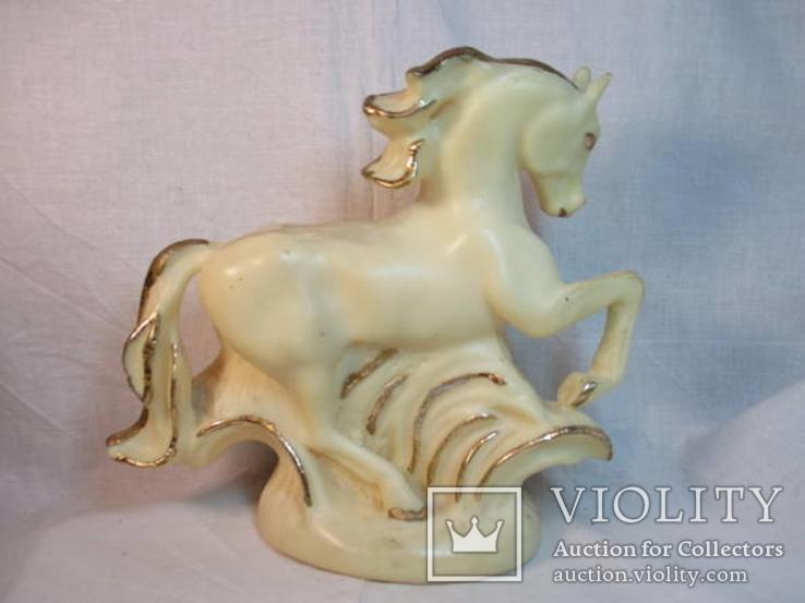 Конь, фото №5