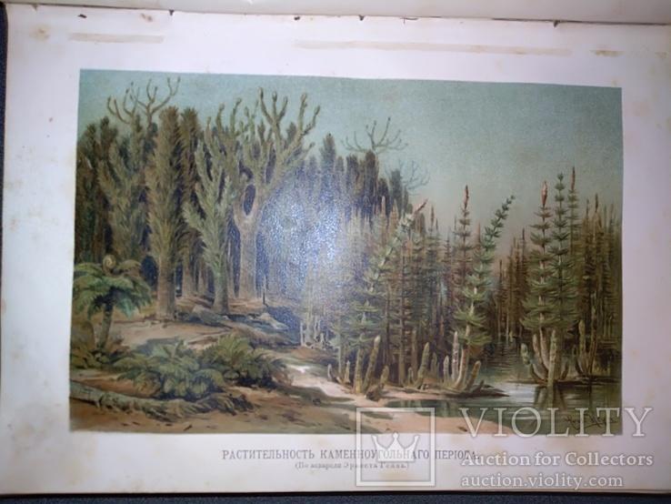 1900 Неймар - История земли т.2