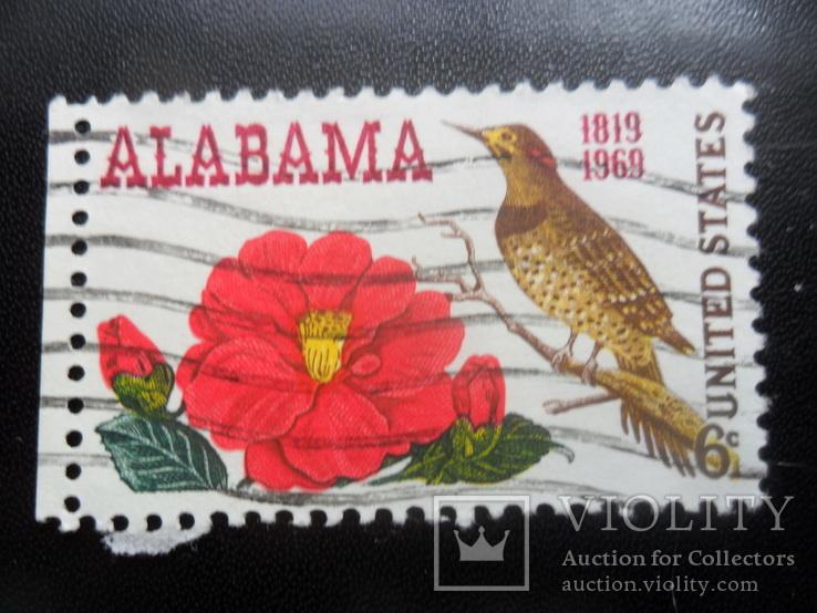 Фауна. Птицы.  США. Алабама. марка. гаш