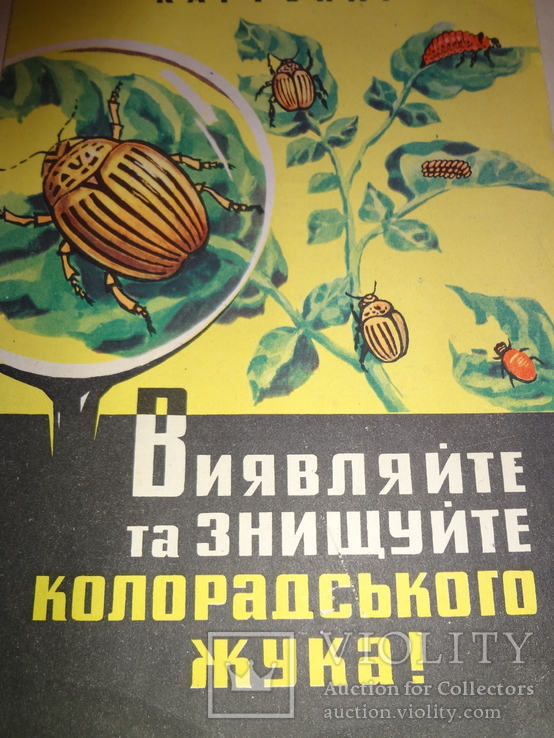 1963 Знищуйте Колорадського Жука українською мовою