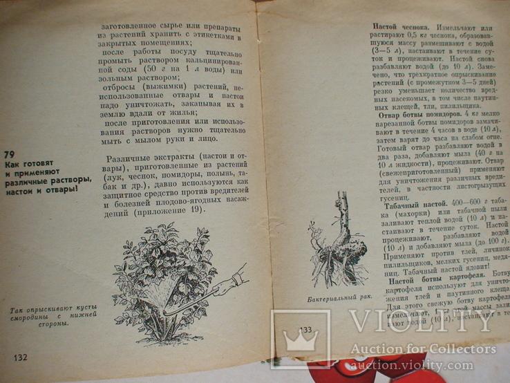 101 вопрос и ответ по садоводству 1973р., фото №4