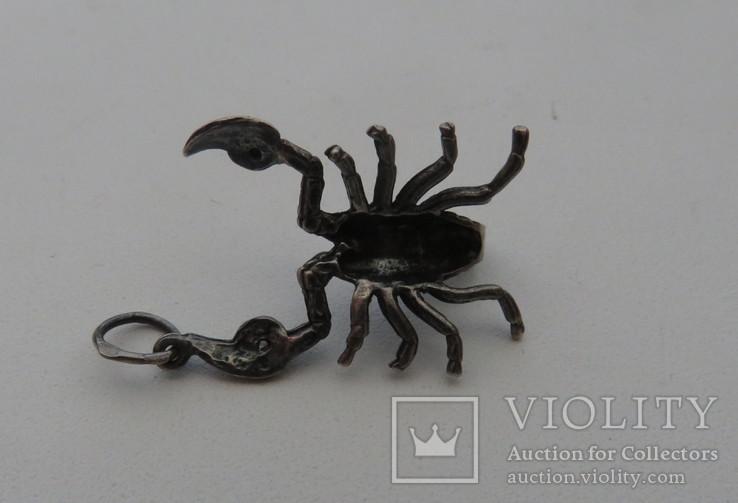 Подвеска ''Скорпион'' серебро 4,25 грамм 925`, фото №4