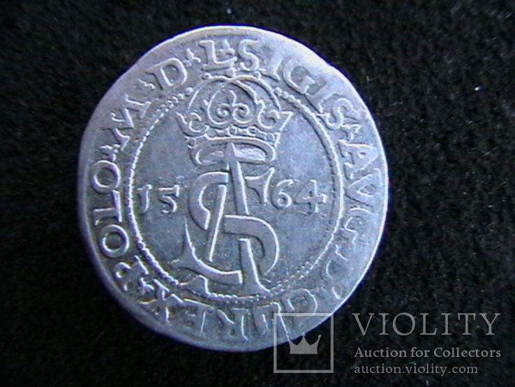 Трояк Сигизмунда Августа 1564 г.