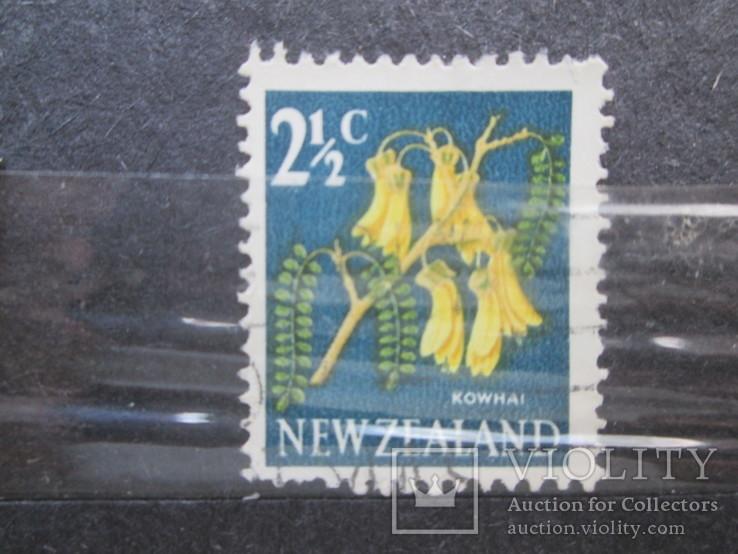 Новая Зеландия флора