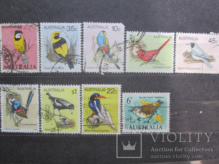 Австралия фауна