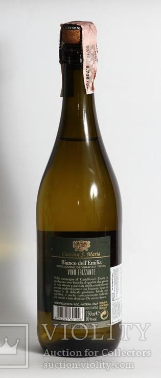 Шампанское Bianchetto 0,75L Italy, фото №4