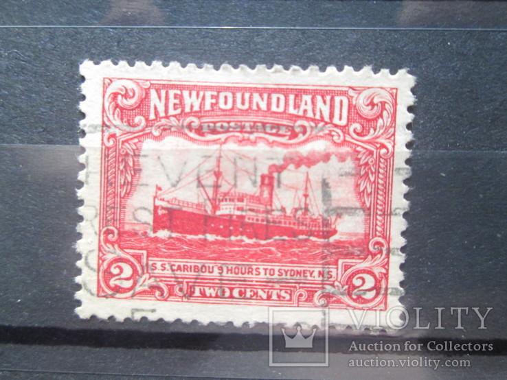 Ньюфаундленд 1931 гаш