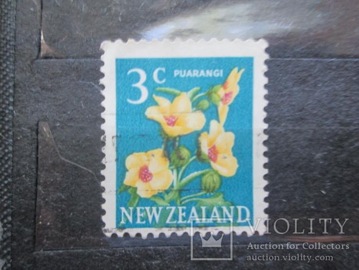 Новая Зеландия флора гаш