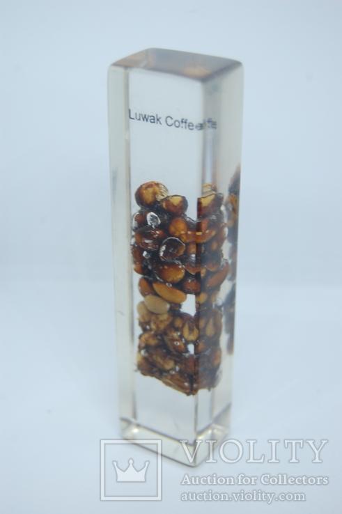 Сувенир Кофе Лувак Luwak Coffee. Самое дорогое кофе. 115мм, фото №7