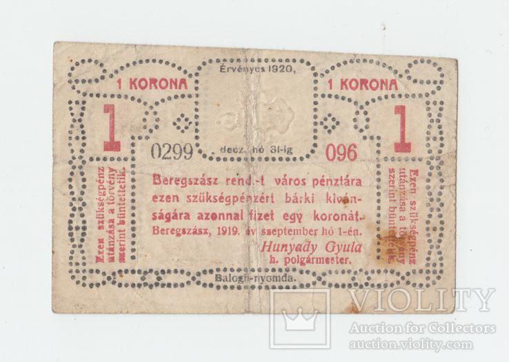 Берегово 1 крона 1919 года