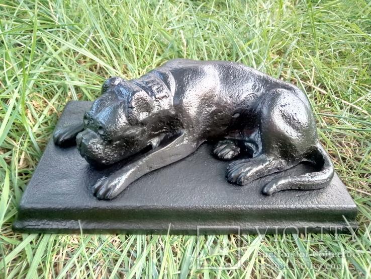 Лежачий пёс (Европа)