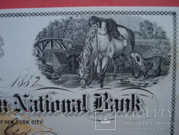 США чек 1882 год на 278,00$ конь