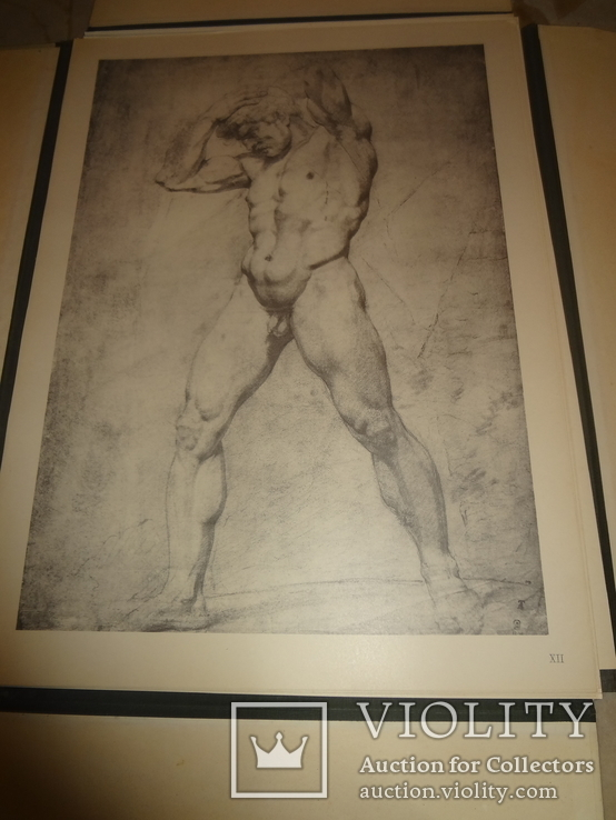 1949 Альбом рисунков обнаженных мужских тел Огромного формата 58 на 42 см., фото №7