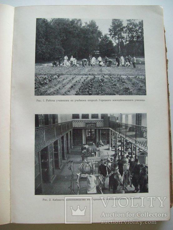 Сельское хозяйство в 1908 году (много рисунков) табак, скот, производство (1000 с.), фото №5