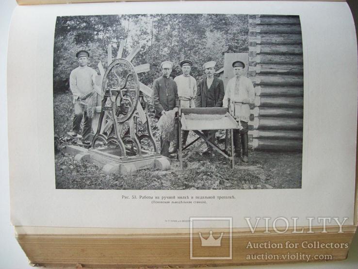 Сельское хозяйство в 1908 году (много рисунков) табак, скот, производство (1000 с.), фото №10