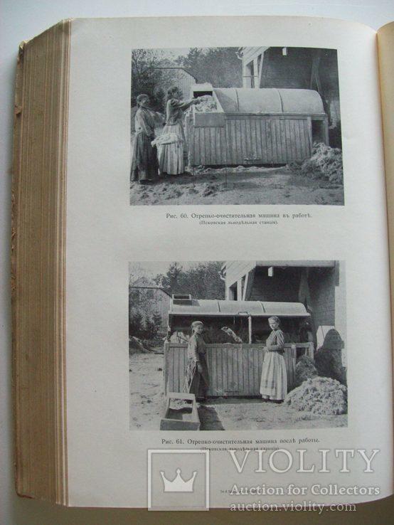 Сельское хозяйство в 1908 году (много рисунков) табак, скот, производство (1000 с.), фото №11
