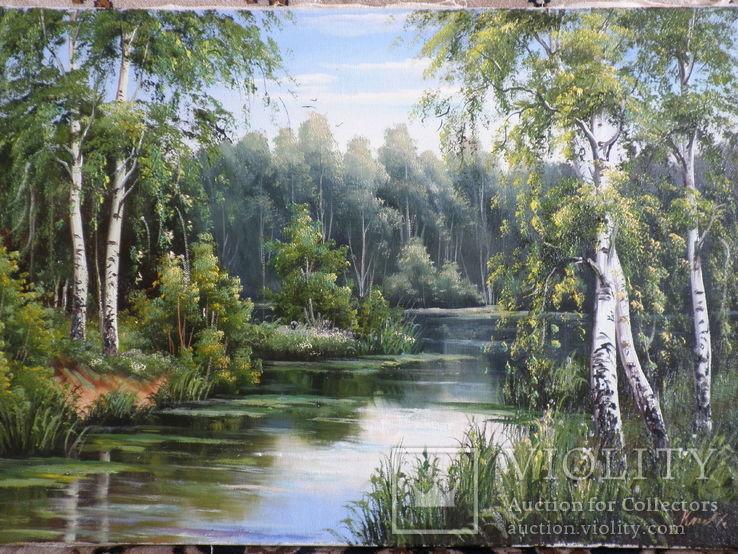 Пейзаж. . Олія,полотно 40х60 см підпис автора.