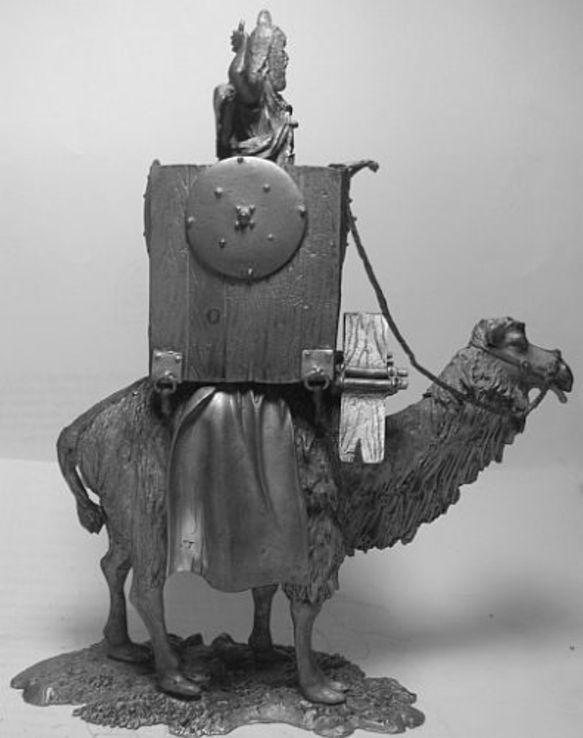 Боевой верблюд 2 век до н.э., фото №4