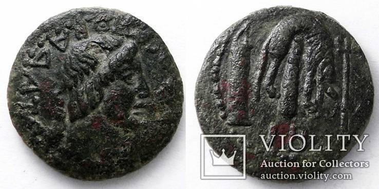 Пантикапей, Ассарий, Митридат VIII, есть на сайте: Монеты Боспора, Лот 1525