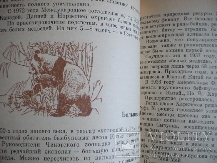 """И. Акимушкин """"Причуды природы"""" 1981р., фото №5"""