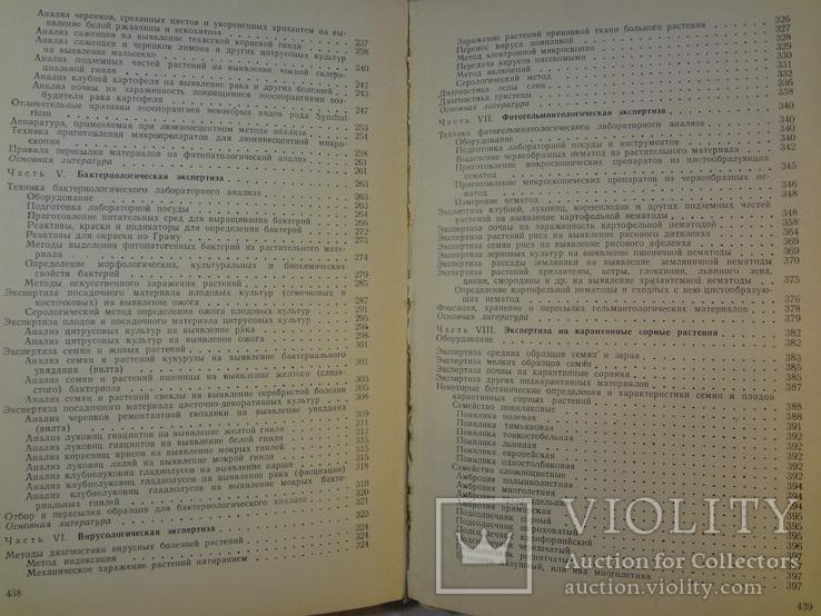 Руководство по досмотру и эксперт. растит. и других подкарантинных материалов, 1972 г, фото №11