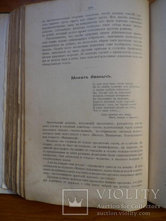 Справочник о животных, фото №10