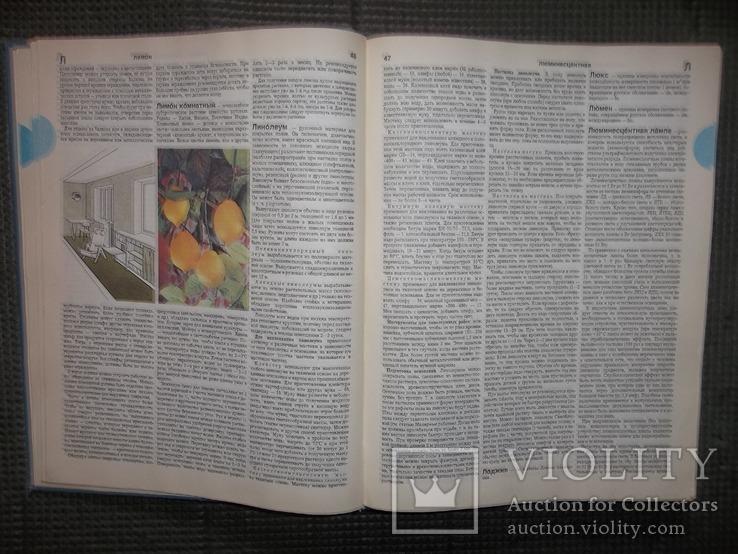 Краткая энциклопедия домашнего хозяйства.1990 год., фото №7