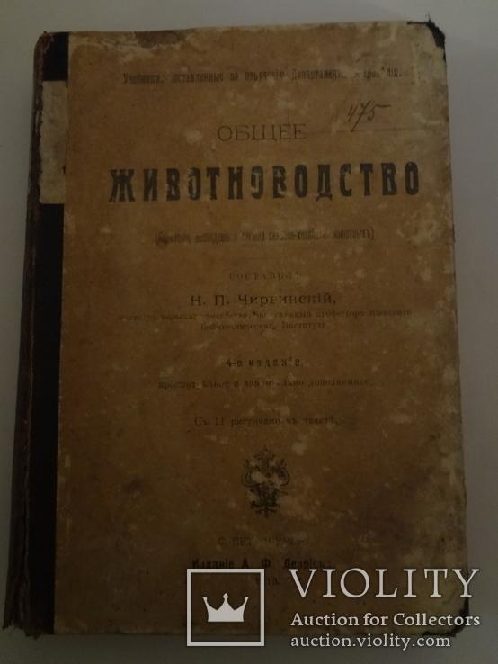1913 Кормление разведение Сельское Хозяйство, фото №3