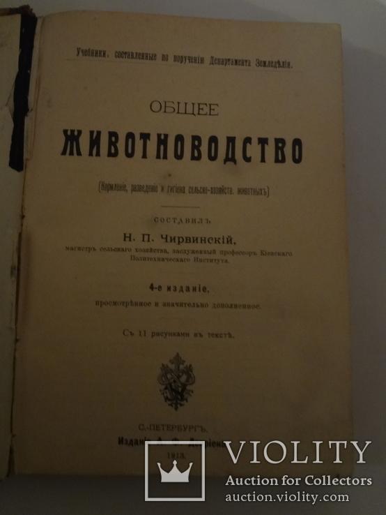1913 Кормление разведение Сельское Хозяйство, фото №4
