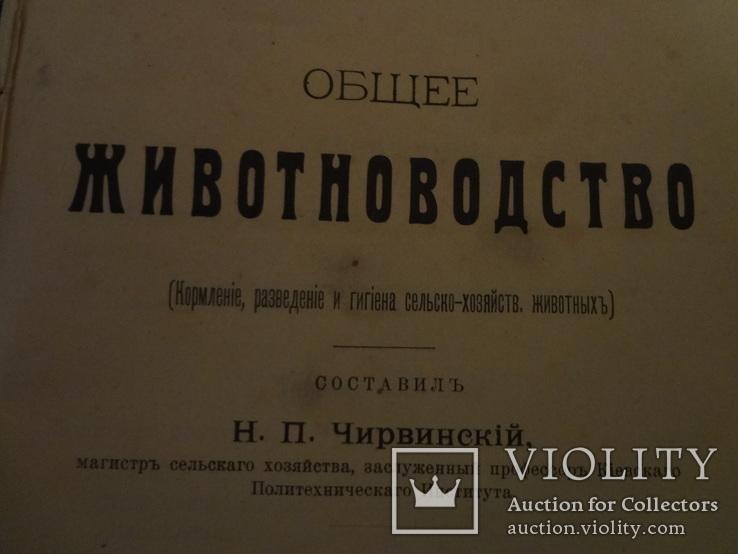 1913 Кормление разведение Сельское Хозяйство, фото №5