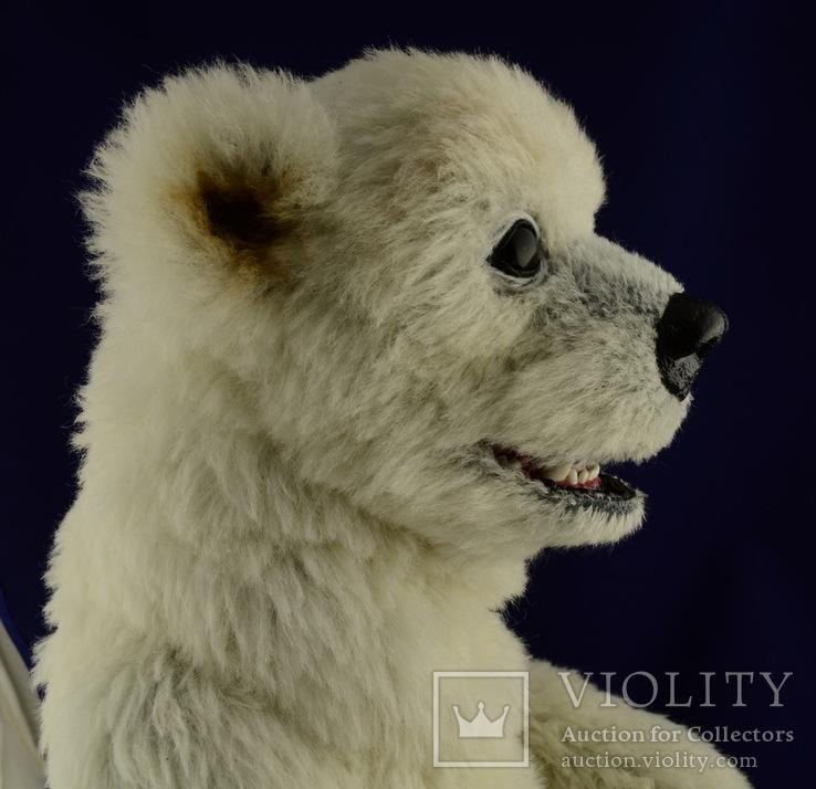 Тедди медведь - Алек