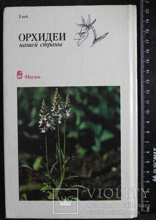 Орхидеи 1991р., фото №3