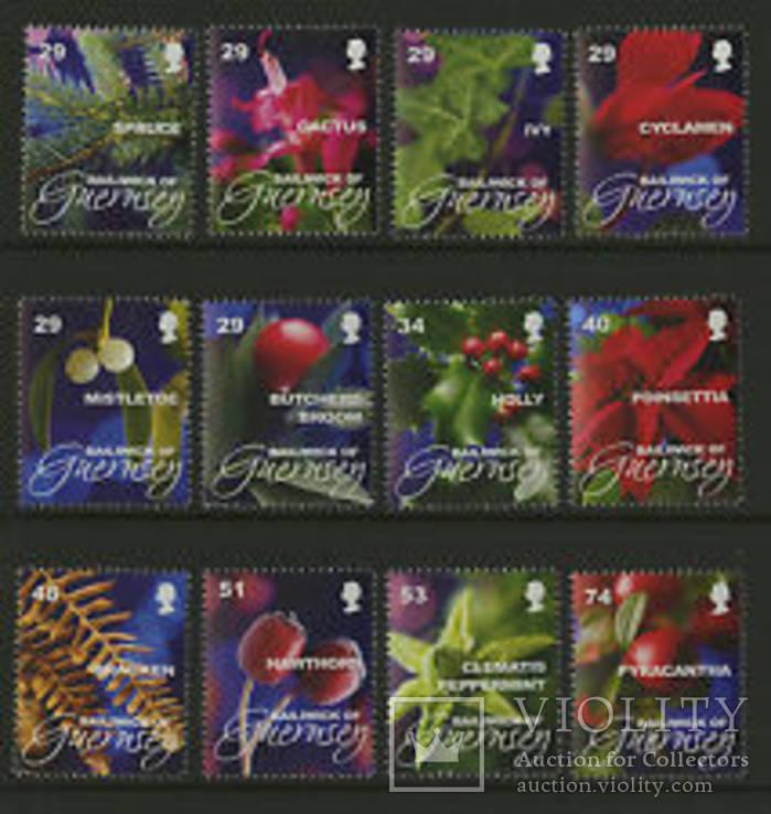 Гернси 2008 флора цветы