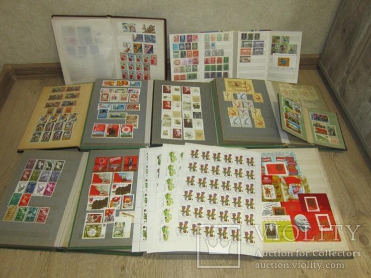 Коллекция чистых марок и блоков в альбомах (марок 2 646 шт, блоков 117 шт).