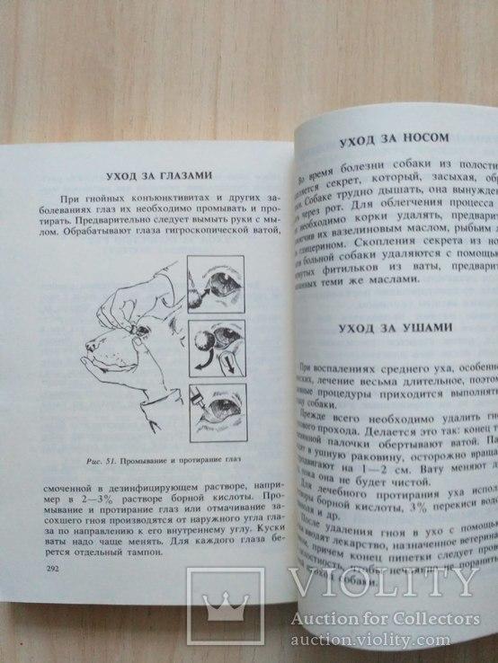 """Баранов """"Здоровье вашей собаки"""" 1989р., фото №8"""