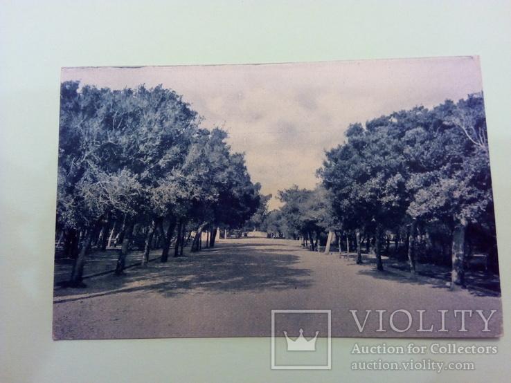 Открытка с видом садов Арденца, Ливорно (Италия), фото №2