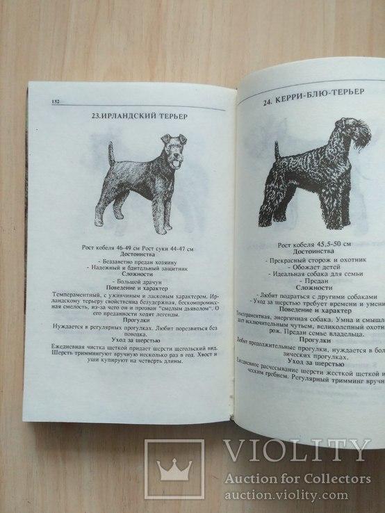 Справочник собаковода любителя, фото №12