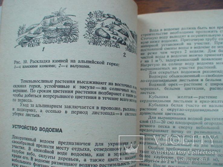 Садово огородный участок 1985р., фото №5