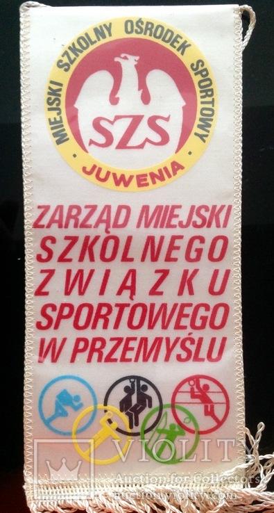Вымпел спортивный Польша, фото №2