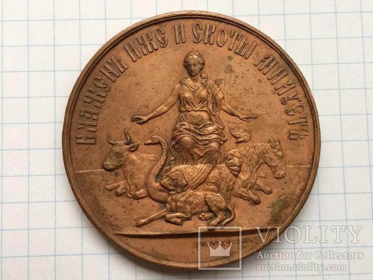 Настольная медаль российское общество покровительства животным 1865 г., фото №2