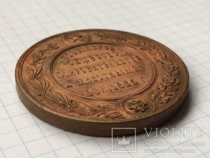 Настольная медаль российское общество покровительства животным 1865 г., фото №4