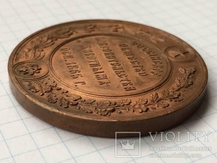 Настольная медаль российское общество покровительства животным 1865 г., фото №5