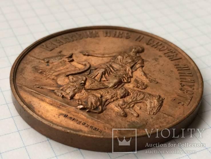 Настольная медаль российское общество покровительства животным 1865 г., фото №8