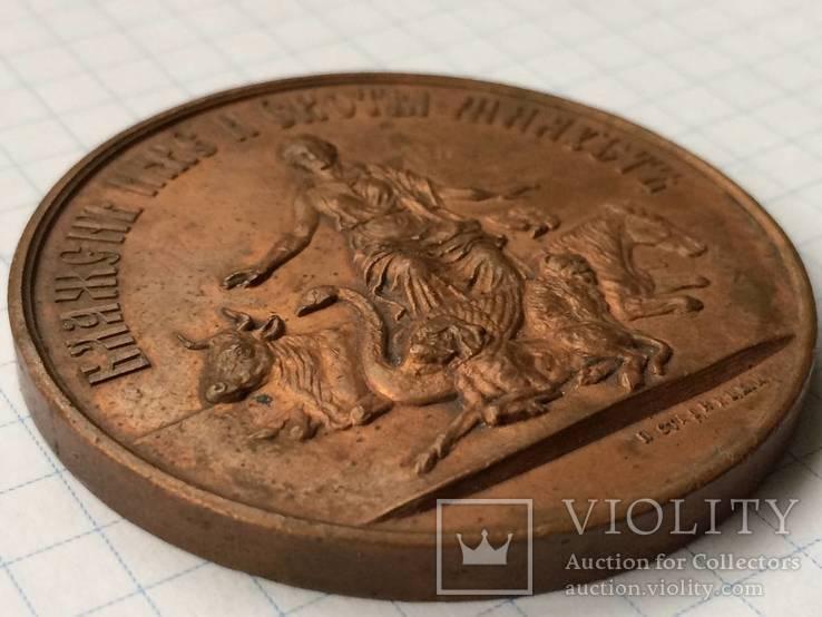 Настольная медаль российское общество покровительства животным 1865 г., фото №9