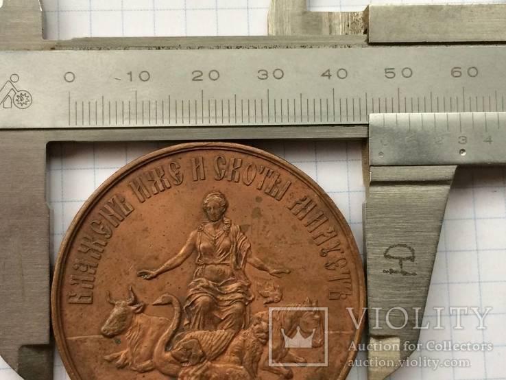 Настольная медаль российское общество покровительства животным 1865 г., фото №10